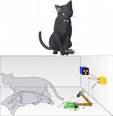 El gato Schrödinger en DDS (arriba) y la paradoja de la física cuántica que lleva su nombre (abajo).